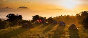 Camping_UK_Casino